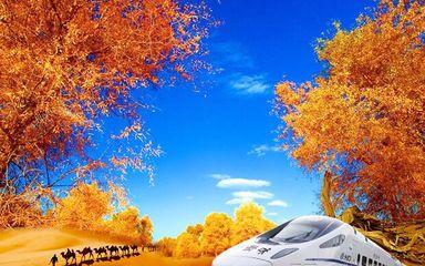 【额济纳全景】额济纳胡杨林-敦煌全景-巴丹吉林-张掖丹霞-嘉峪关-金沙湾胡杨林-黑城-怪树林-动车8日