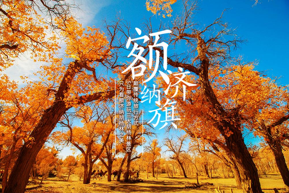 ¥3580元起 额济纳胡杨林-巴丹吉林腹地-金塔胡杨林-怪树林-八日