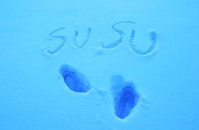 冰天雪地,欢天喜地 2015年12月东北雪乡七日行