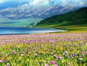 天山环线深度游-赛里木湖-伊犁-夏特古道-喀拉峻-昭苏-巴音布鲁克-吐鲁番九日游