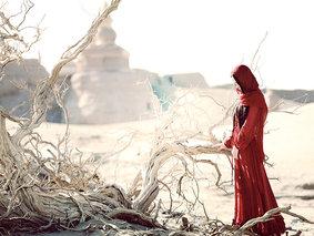 银川-额济纳-额济纳-腾格里沙漠-镇北堡影视城-月亮湖-怪树林-黑城6日深度游