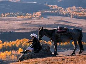 北疆自由行-喀纳斯-禾木-天山天池-五彩滩-魔鬼城-可可托海小团6日拼车游