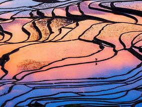 元阳摄影游-2021元阳梯田-罗平油菜花-东川红土地-九龙瀑布-元谋土林摄影8日游